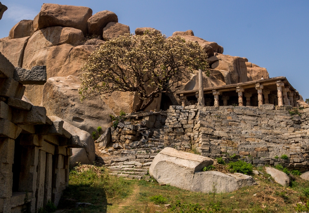 Árboles en flor entre las ruinas y el calor