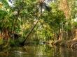Los canales más pequeños de los Backwaters, Alepey