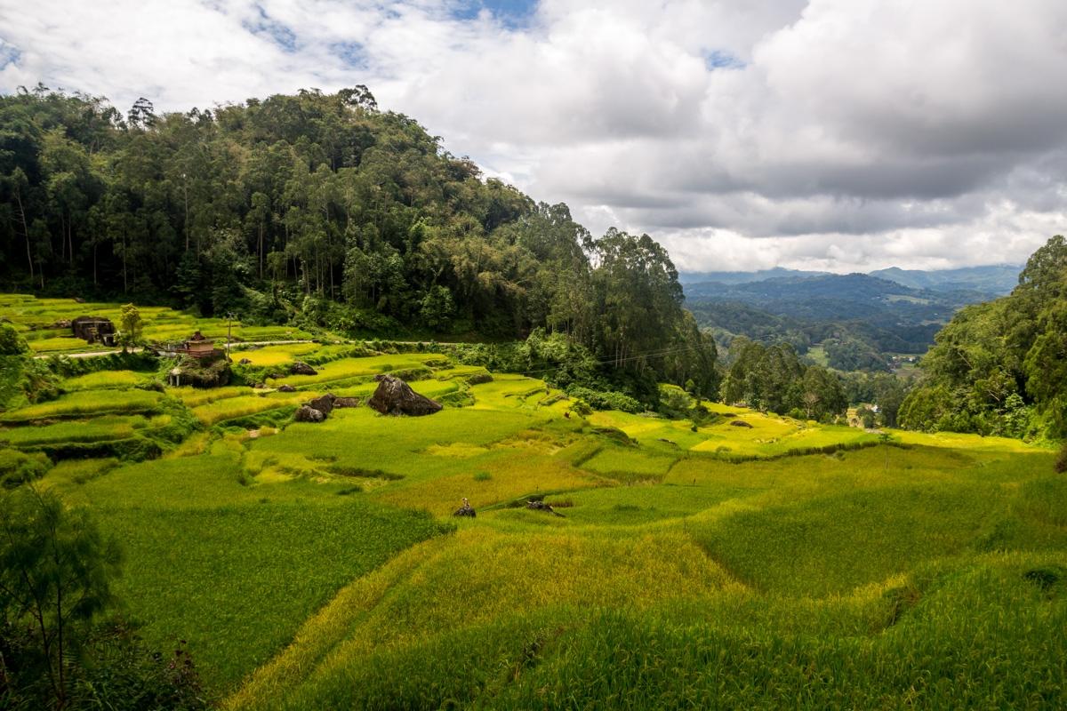 Las vistas en las alturas de Tana Toraja