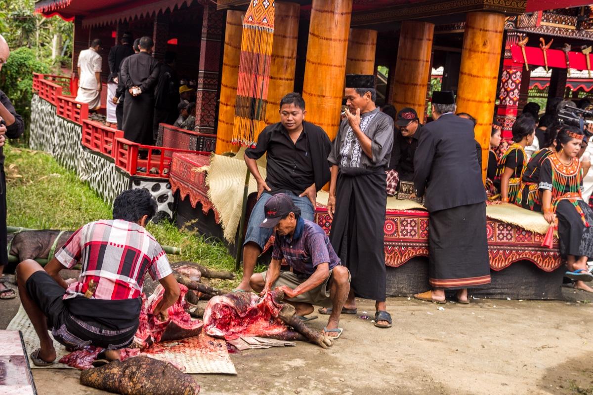 Despiece y repartición de cerdos, funeral Tana Toraja