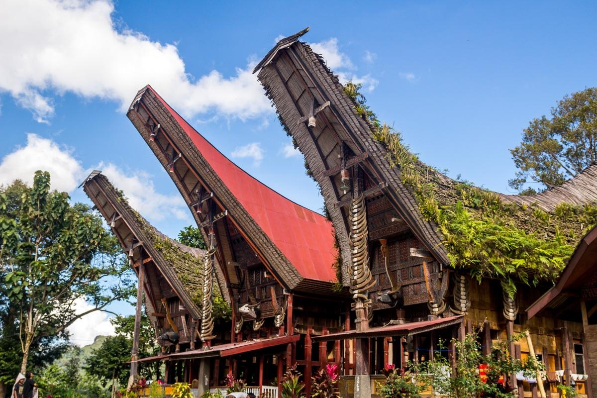 Tongkonan, casas Tana Toraja