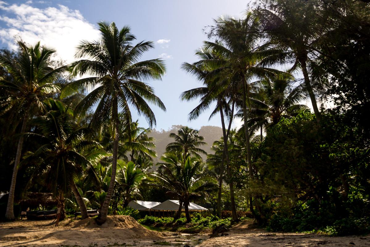 Hacia el interior de Rarotonga, islas Cook