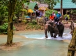 Y sí, tienen negocio de elefantes en Tad Se, Luang Prabang