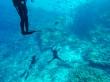 Composición caótica de inmersión