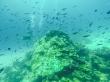 Pináculo, Guraidhoo, Maldivas