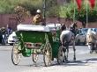 Calesa por las calles de Marrakech
