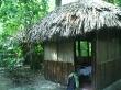 Nuestras cabañas en Palenque