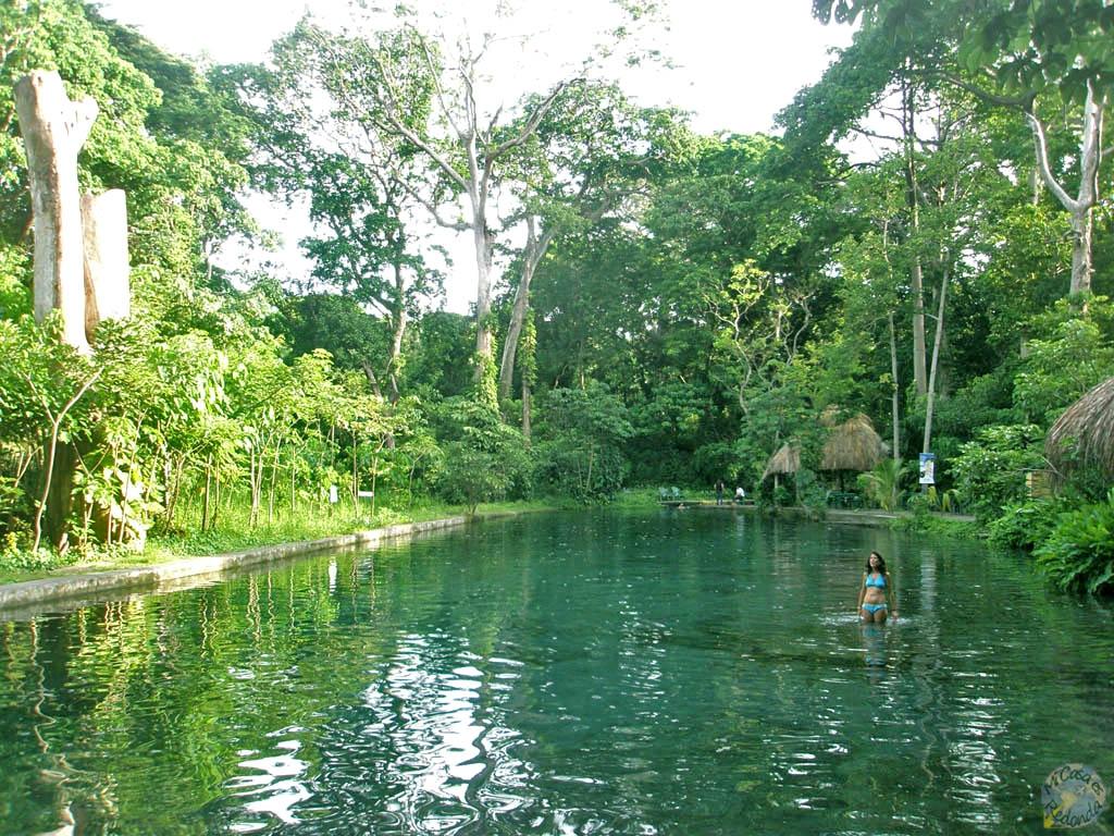 Piscina natural en Ometepe. Aquí pasó una serpiente cascabel nadando a 1 metro escaso nuestro