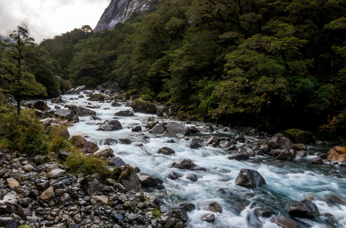 Ríos de montaña, camino de Milford Sound