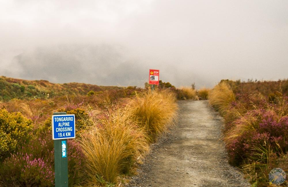 Comenzando el Tongariro Alpine Crossing