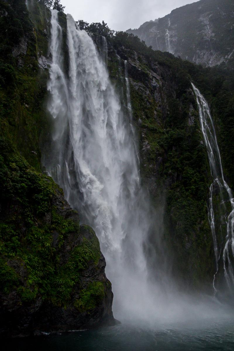 El verdor de Milford Sound