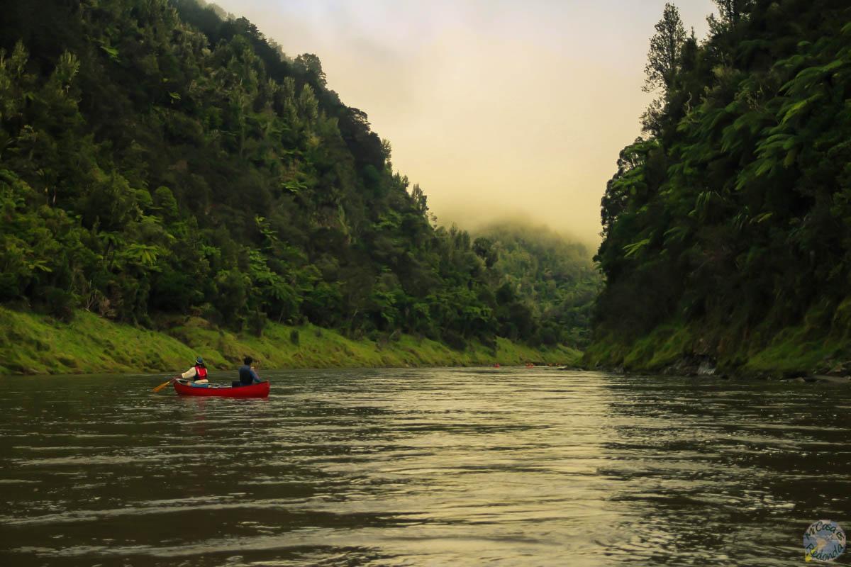 Amanecimos con niebla sobre nosotros, Whanganui Journey