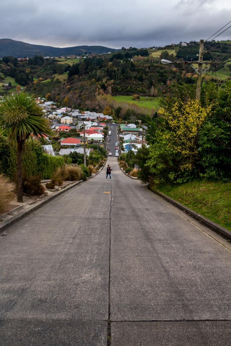 Baldwin Street, la calle más empinada del mundo, Dunedin