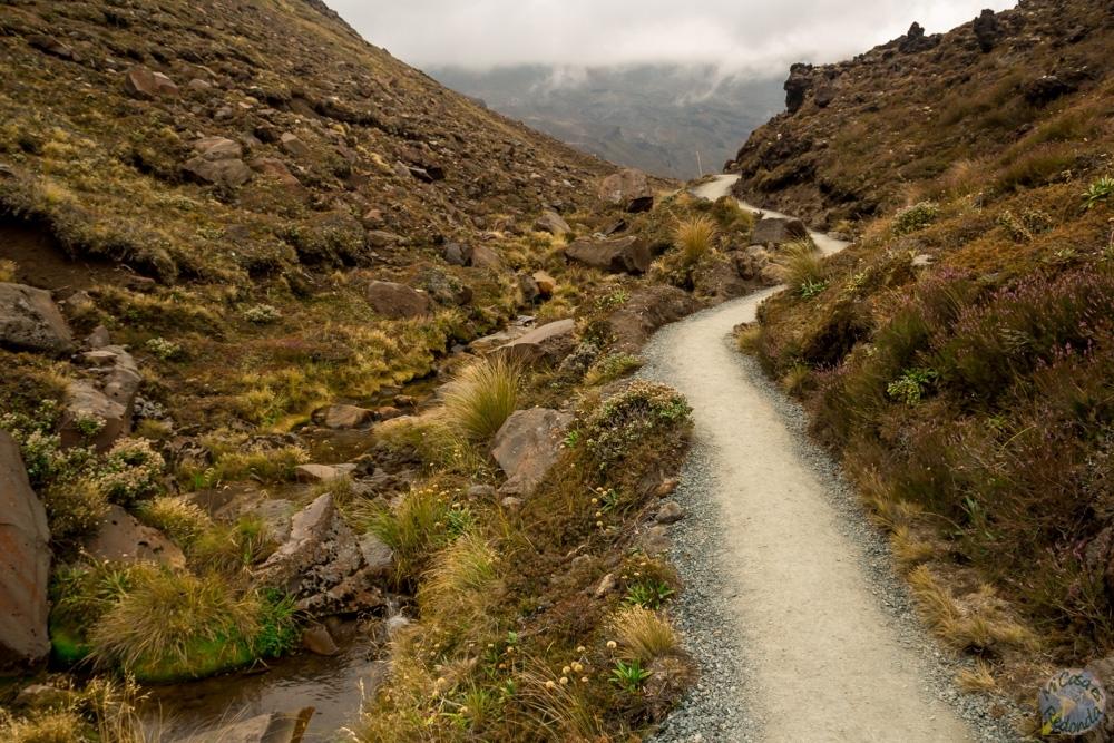 Las primeras curvas, Tongariro Alpine Crossing