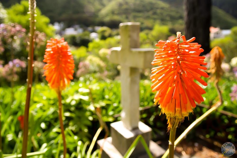 Tumba entre flores, en el Wellington Memorial Park