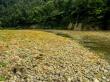 Piedras sobre piedras, Whanganui Journey