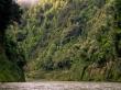 Para ver la inmensidad, fijaos en la pequeña canoa al fondo. Whanganui Journey