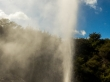 Geiser en pleno apogeo, Rotorua