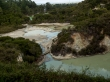Siguiendo con la ruta en Wai-O-Topu, Rotorua