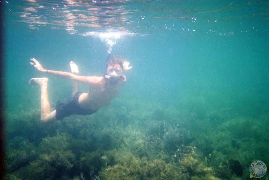 Snorkel a lo Nevermind