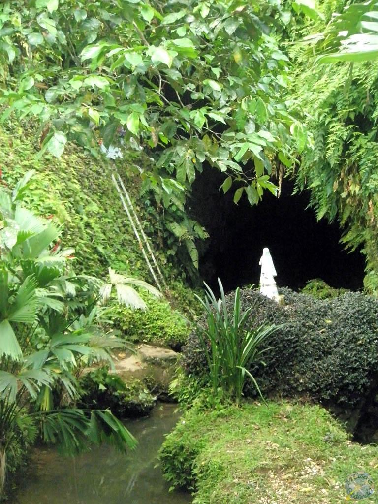 La cueva de los temibles murciélagos