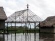 Iquitos. No se cómo subió, pero saltar, saltó