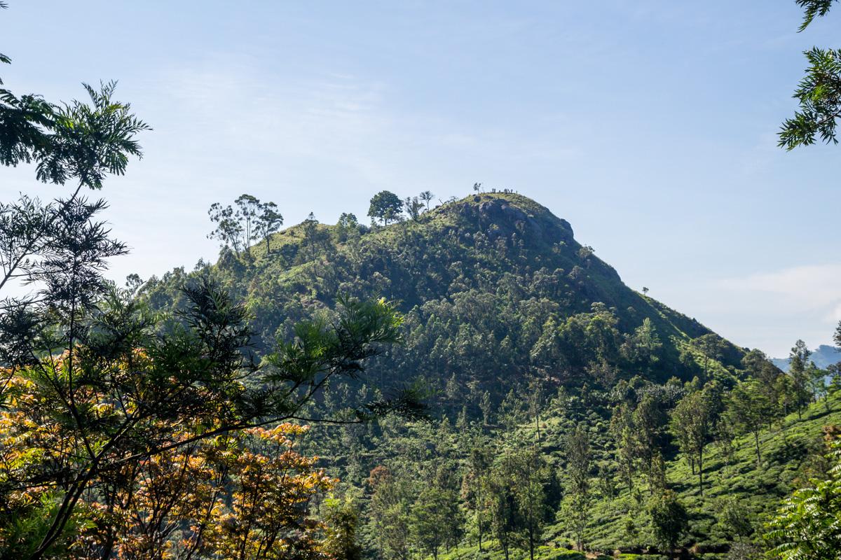 Mini Adam's Peak, Ella