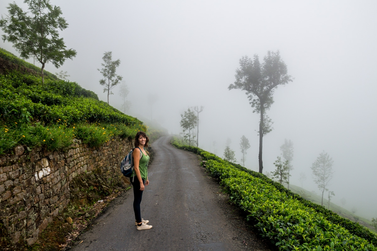 Caminando hacia la niebla, Haputale