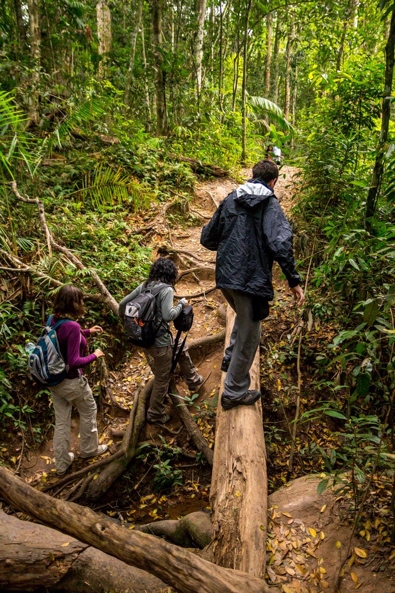 Jugándonos la vida a cada paso, Khao Yai National Park