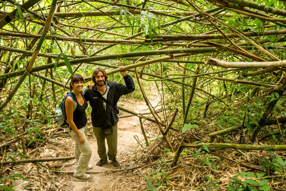 Entre los bambús! Khao Yai National Park