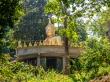 Buda en Koh Phayam