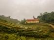 Caminando por las laderas de Sapa