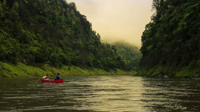 Whanganui Journey